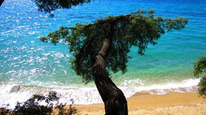 beach_elia